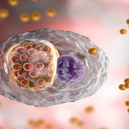 chlamydia 5